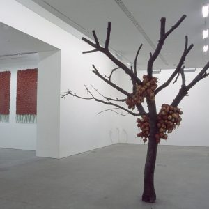 Anya Gallaccio, Installation view (2003), Ikon Gallery