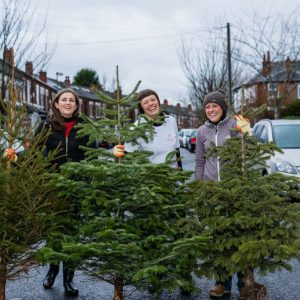 Volunteers will collect used Christmas trees with the Hospice's Treecycling scheme photo by Aaron Scott Richards
