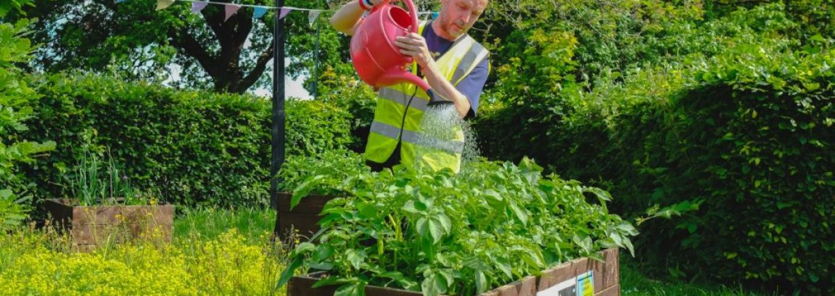 Green Gym comes to Bournville with Health for Life